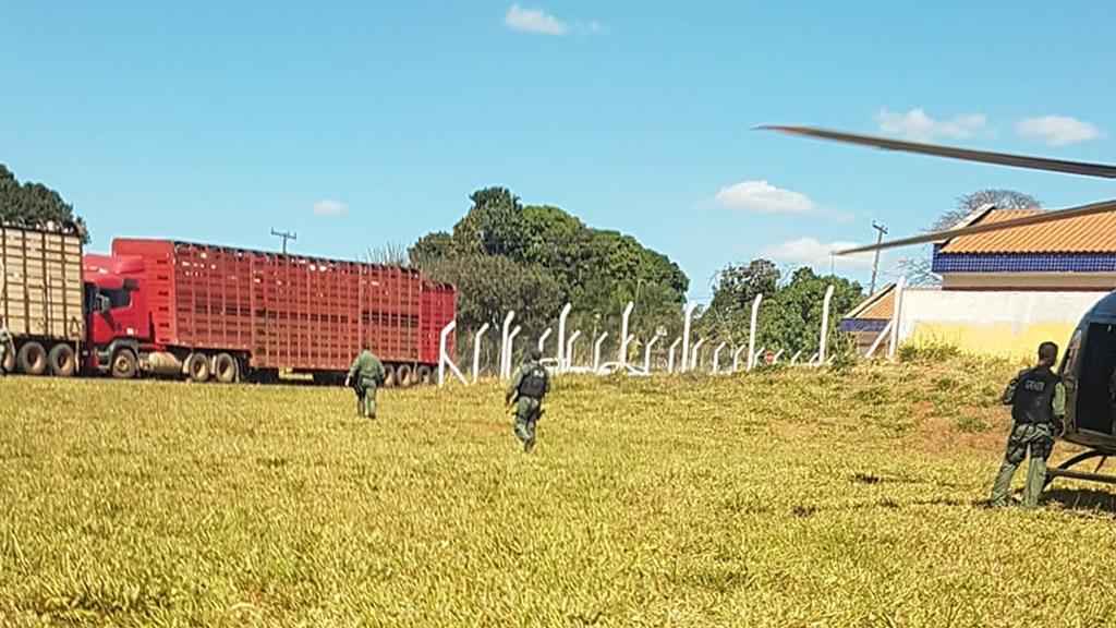 Agentes do Graer aproximam das carretas que transportavam gado roubado (Fonte: Divulgação Polícia Militar)
